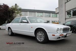 Jaguar in weiß glänzend Foliert
